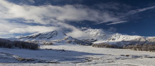 Тенгиз Тарба Зима 1