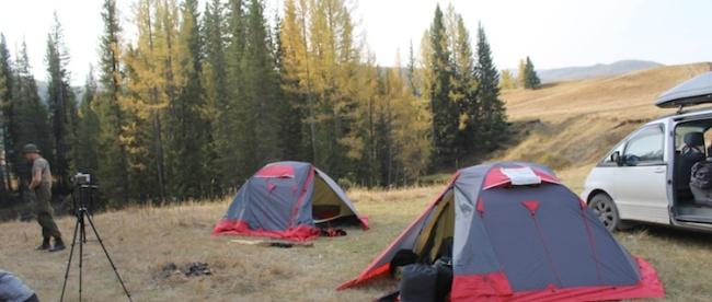 велотуры палатки