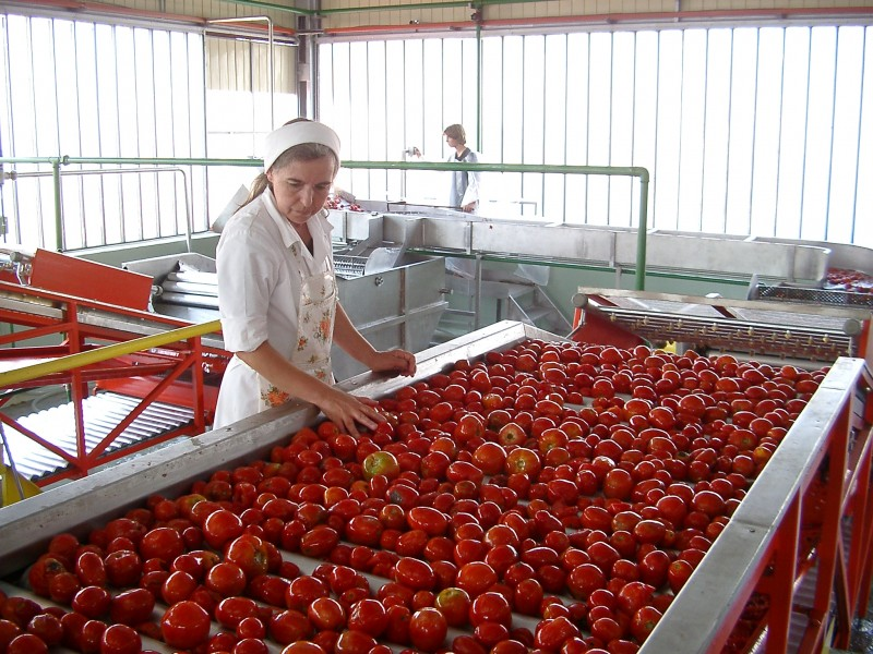 еще какие фрукты и ягоды выгодно выращивать того, что