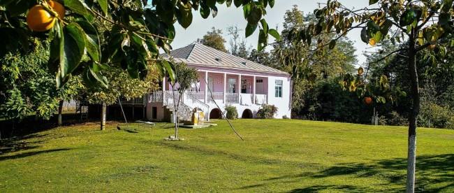 абхазский дом