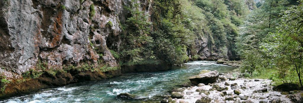 горная речка 1
