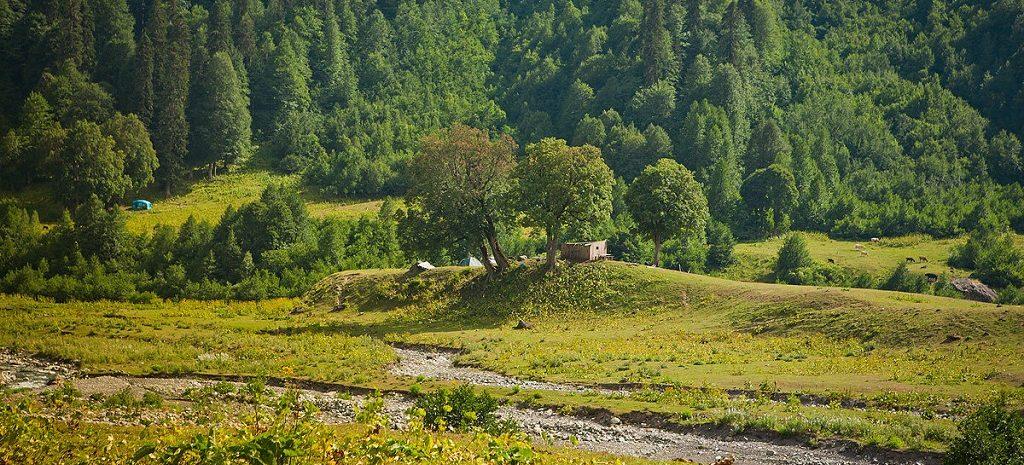 Абхазская природа